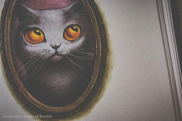 Facéties-de-chats-15