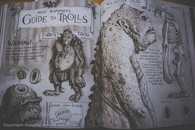 HP-illustré-vol1-11