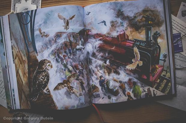 HP-illustré-vol1-12