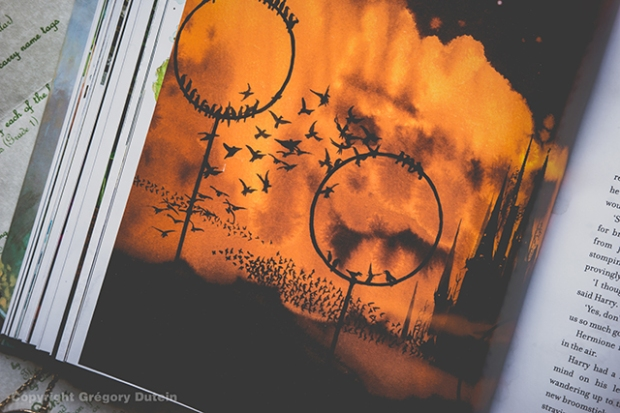 HP-illustré-vol1-18