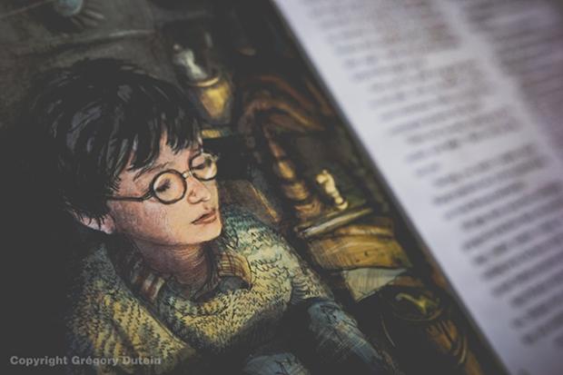 HP-illustré-vol1-3
