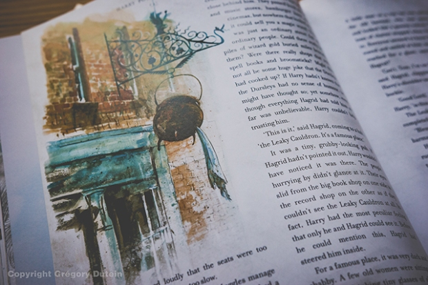 HP-illustré-vol1-5