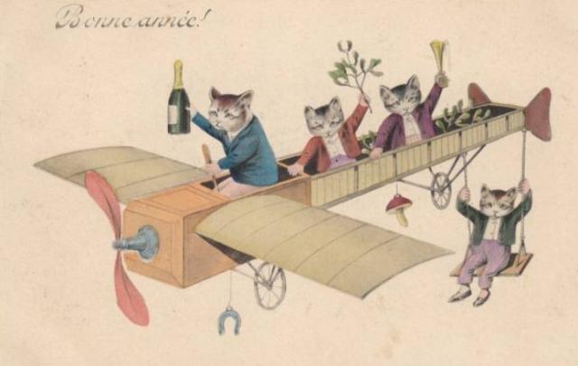 newyearcats