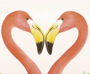 flamingos.heart